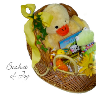 Basket of Joy for Baby